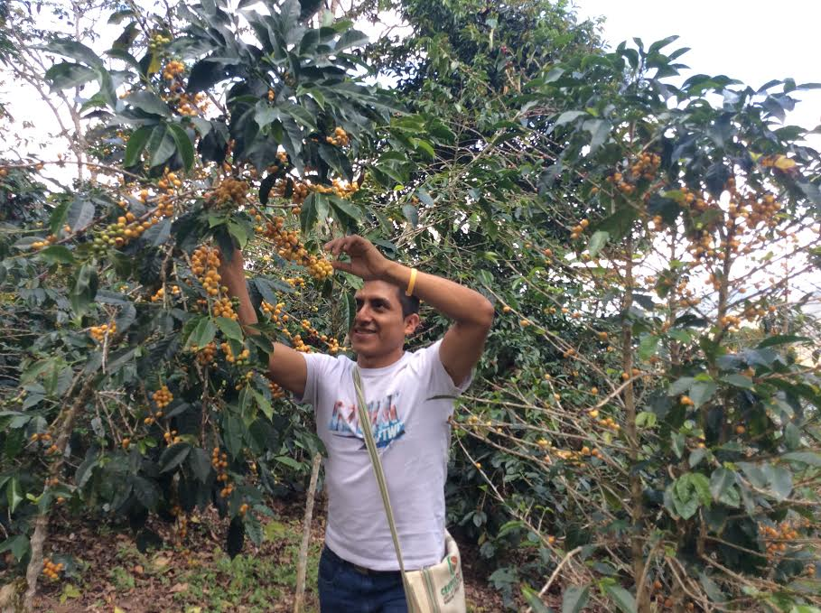Rony, the owner / farmer of La Flor del Zapote